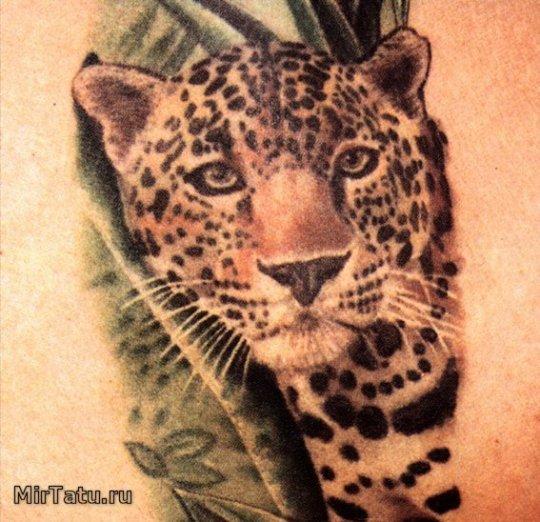 Татуировка леопарда
