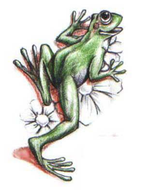 Весёлая лягушка лежит на ромашках