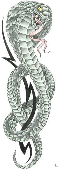 Змея или кобра и кельтский узор