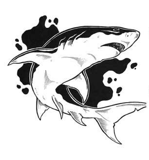 черно белая картинка акула