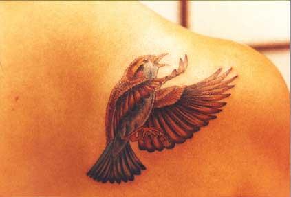 На плече татуировка 1 татуировка